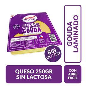 Queso-Gauda-sin-lactosa-laminado-Surlat-250-g