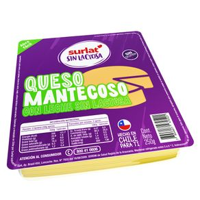 QUESO-MANTEC-S-LACTOSA-LAM-SURLAT-250GR-1-65495