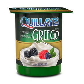 oghurt-Griego-Quillayes-berries-110-g