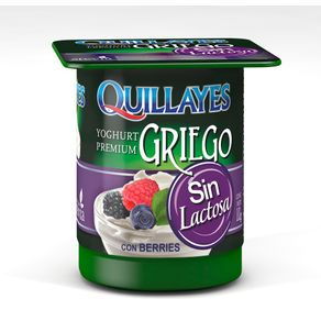 Yoghurt-Griego-Quillayes-sin-lactosa-berries-110-g
