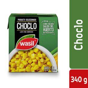 Choclos-Wasil-tetra-340-g