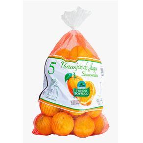 Naranja-jugo-malla-5-Kg