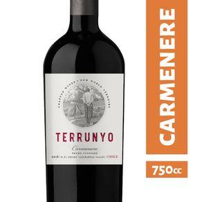 Vino-Concha-y-Toro-Terrunyo-carmenere-750-cc