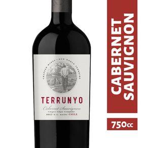 Vino-Concha-y-Toro-Terrunyo-cabernet-sauvignon-750-cc