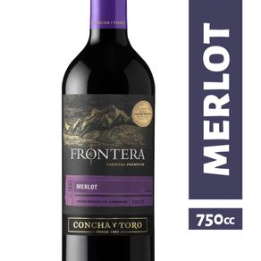 Vino-Fontera-merlot-premium-750-cc-